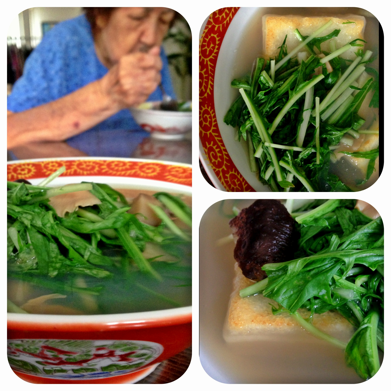 IB Ozoni Soup